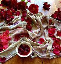 rose petal dyeing