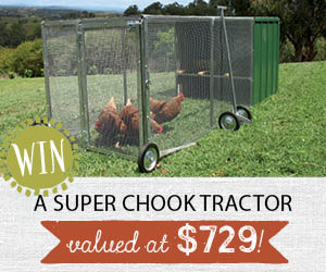 Win a chook tractor