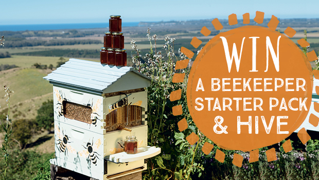 Flow hive competition