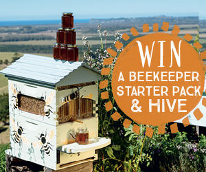 Win a beekeeper starter pack & hive