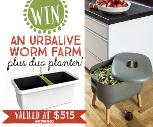 Win an Urbalive worm farm plus Duo planter