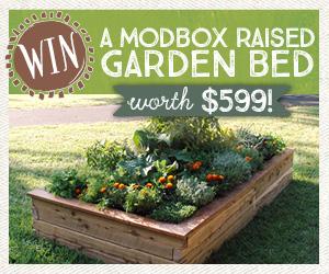 Modbox garden bed