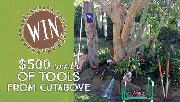 CutAbove Tools