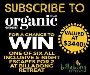 subscribe Billabong Retreat