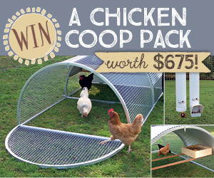 Chicken Coop pack