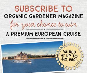 2018 European cruise