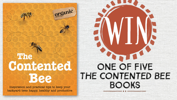 The Contented Bee book giveaway