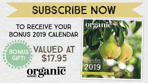 OG 104 subscribe 2018 giveaway