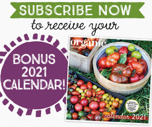 120Subscription
