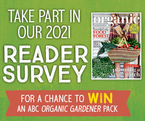 OG Reader Survey 2021