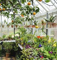109 greenhouses