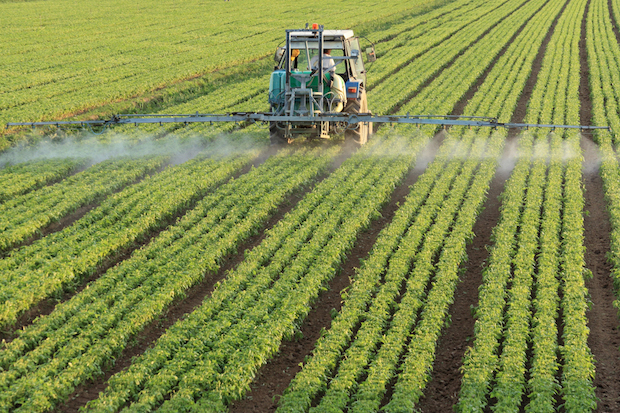 Chemical spraying on crops