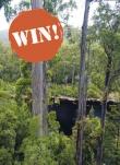 Win a trip to tassie