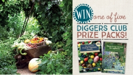 Diggers competition