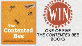 The Contented Bee giveaway