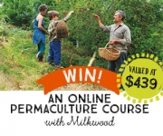 Learn about permaculture with Milkwood