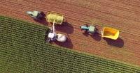 Broad-scale farming