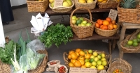 Backyard produce at the local store - The Lane, Palmwoods