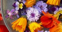 From garden to plate – borage, heartsease, calendula, nasturtiums, dill and cornflowers.