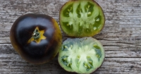 Green and black heirloom tomatoes