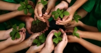 Kids urged to adopt a farmer - New scheme links schools with organic farms