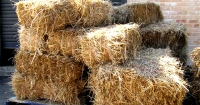 How to make straw bale gardens