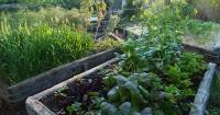 Tyirrima Farm