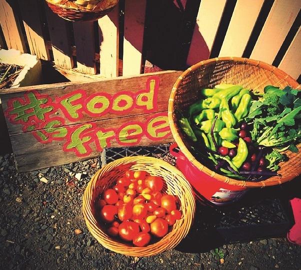food is free Ballarat