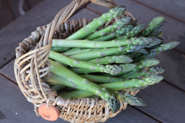 A basket of asparagus
