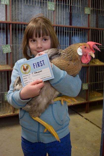 Poultry show winner