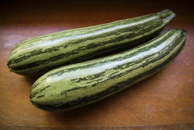Cocozelle Zucchinis