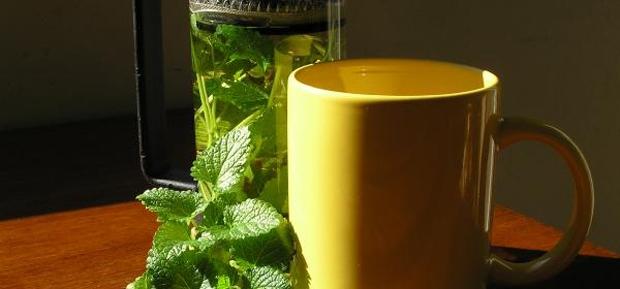Herbal Tea, grow your own
