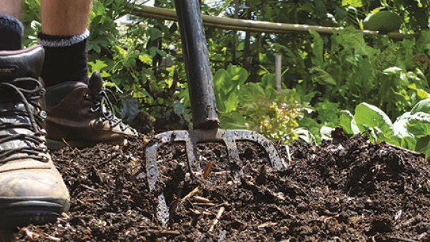 When He Moved From The UK To Australia It Took Him Five Years To Improve  The Clay Soil In His Brisbane Garden. This Is How He Did It.