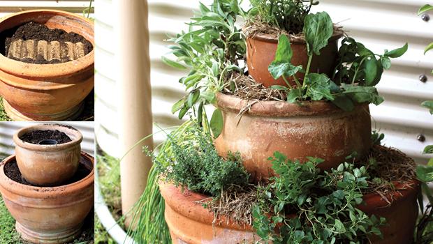 native herb spiral