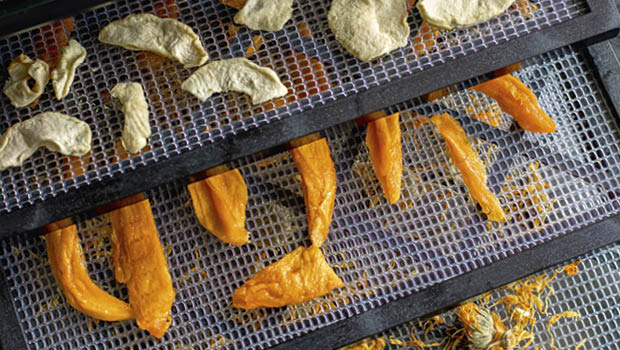 Dehydrating food from The Artisan Kitchen by James Strawbridge