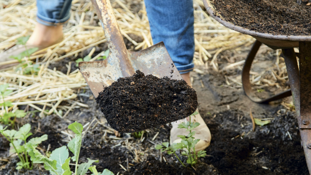 Composting is an important way to turn waste into nutrients for your garden.