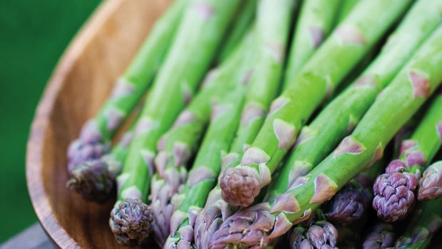 Succulent spears of freshly picked asparagus are delicious raw or cooked.