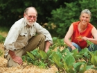 Graham and Annemarie Brookman in their market garden at The Food Forest.