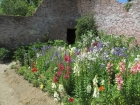 Flowers in the walled garden
