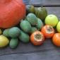 Part of Karen Sutherland's May Harvest