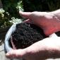 Black biochar