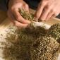 Saving leek seeds
