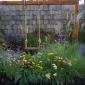 A diverse garden