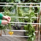 Hanging herbs on clothes horse