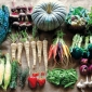 Produce at Transition Farm