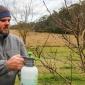 Winter Washing Fruit Trees